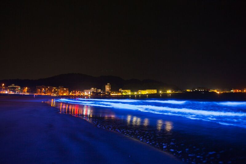 Night Wave in Zushi