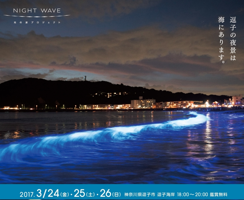 NIGHT WAVE in ZUSHI(別ウィンドウ)